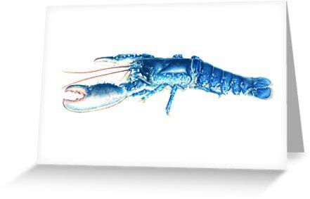 Common Lobster, Homarus gammarus watercolour by Sarah Trett