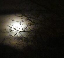 Once upon a Gothic full moon by MarianBendeth