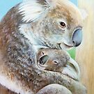 &quot;The Koala cuddle&quot; portrait fine art by Sarah Trett