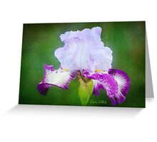 Painted Iris Greeting Card