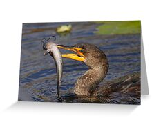 Double-crested Cormorant Fishing Greeting Card