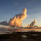 Dawn in the Torres Strait by Chris Cohen