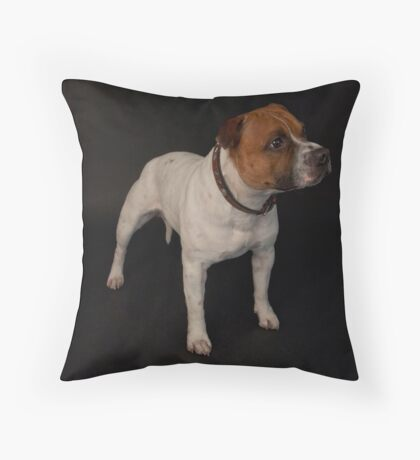 Gizmo (Seenworstaff Stand By Me) Throw Pillow