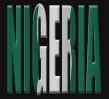Nigeria flag by stuwdamdorp