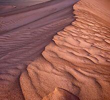 Barren Beauty by Mieke Boynton