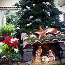 Christmas in Catania, Sicily, Italy by Douglas E.  Welch