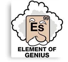 Einstein, Witty Geek Canvas Print