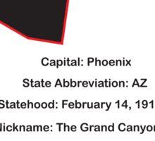 Arizona Information Sticker