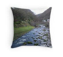 Village By The Rush Throw Pillow
