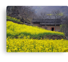 Yellow Flowers and Farmhouse, China Canvas Print