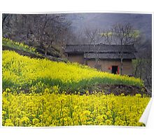 Yellow Flowers and Farmhouse, China Poster
