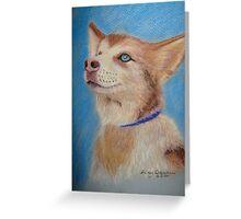 Malamute puppy Greeting Card
