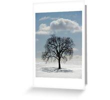 Backlit Tree  Greeting Card