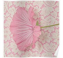 Pink Lavatera Blossom On Vintage Lace - Macro Poster