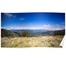 View from Barrinton Forrest Rd, Barrinton Tops Poster