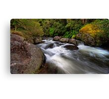 Manning River, Barrington Tops Canvas Print