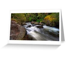Manning River, Barrington Tops Greeting Card