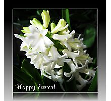 Easter Card with Dreamy White Hyacinth Photographic Print