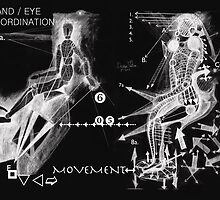 Hand & Eye Co/ordination.  by Andrew Nawroski