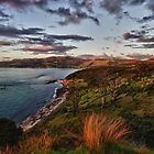 The Hokianga by meredithnz