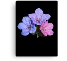 Mary and Joseph Spring Flowers Canvas Print