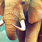 Elephant by Shannon Posedenti