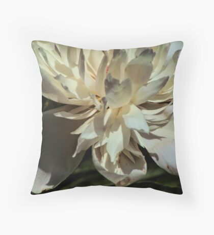 Petals of pale pink Throw Pillow