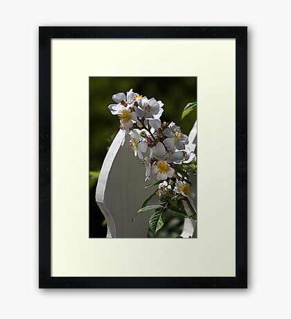 With My Fence Framed Print
