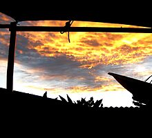 Sky On Fire by Vanessa Barklay