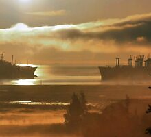 Mothball Fleet by Barbara  Brown