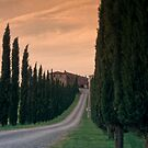 Tuscan Farmhouse by andrewsound95