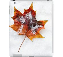 Fallen Leaf in the Snow iPad Case/Skin