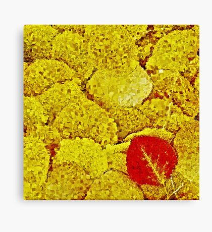 Yellow Autumn Canvas Print