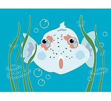 Funny Fish Photographic Print