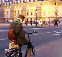 Biking in Paris by Ben Fatma Marc