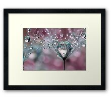 Raspberry Sparkles Framed Print