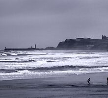 Whitby in Winter by Theresa Elvin