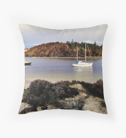 Silver Sands Throw Pillow