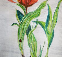 Tulips and Bulbs by GEORGE SANDERSON