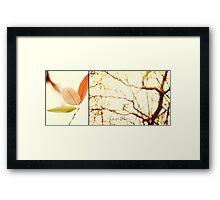 Fall Combo Framed Print