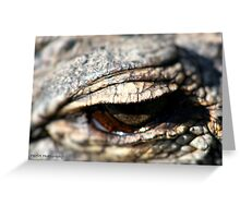 One eye on the subject Greeting Card