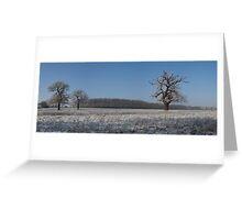 Winter Wonderland. Greeting Card
