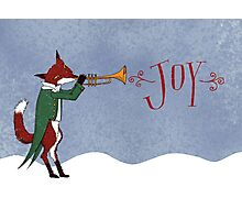 Christmas Fox Photographic Print