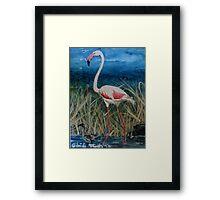 Flamingo With Offspring Wading Through Rivergrass Framed Print
