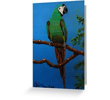A Jubilant Green Macaw, All Alone Greeting Card