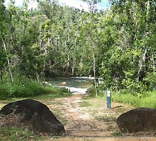 The Swimming Hole at the Murray Falls Picnic Area by STHogan