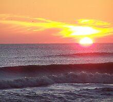 sunset southside by tamarama