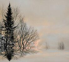 Pale Moon ! by Elfriede Fulda