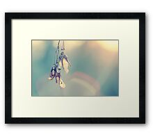 Lovely winter sun Framed Print