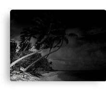the beach of dark waters Canvas Print
